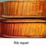Button restoration page Rib