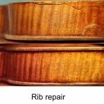 Button restoration page Rib